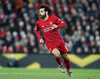 30th November 2019; Anfield, Liverpool, Merseyside, England; English Premier League Football, Liverpool versus Brighton and Hove Albion; Mohammed Salah of Liverpool  - Strictly Editorial Use Only. No use with unauthorized audio, video, data, fixture lists, club/league logos or 'live' services. Online in-match use limited to 120 images, no video emulation. No use in betting, games or single club/league/player publications