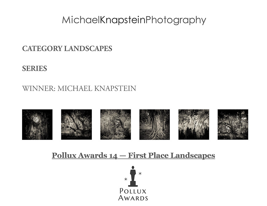 """A series of six photographs from the """"Southern Exposure"""" portfolio by Michael Knapstein was named the First Place Winner for Landscape Series in the 14th Annual Pollux Awards."""