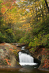 Thunderhole Creek in early autumn, Proposed Grandfather Scenic Area, Globe Forest, Pisgah National Forest