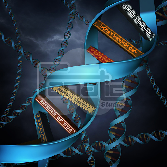 Illustrative image of DNA replica with books