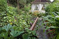 Garden design of intensive raised organic vegetable beds around gazebo