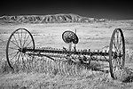 Monochrome image of old farm equipment in field