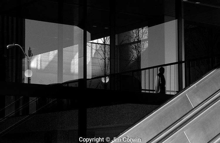 Silhouetted man in a complex pattern of reflections from windows in an office building