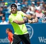 Juan Martin Del Potro of Argentina at the Western & Southern Open in Mason, OH on August 18, 2012.