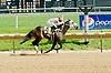 Drivebymedia winning at Delaware Park on 5/12/12
