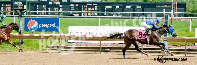 Brimstone Island winning at Delaware Park on 6/15/13