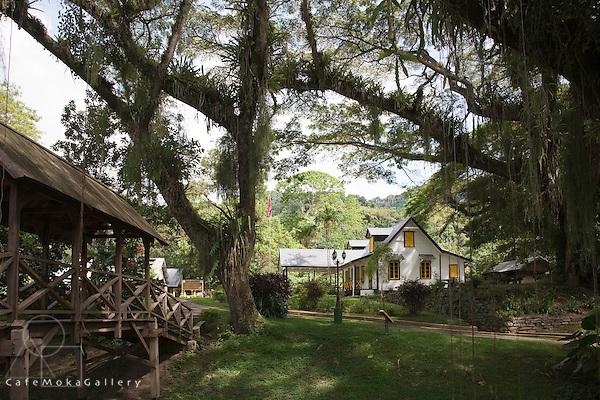 Lopinot estate house