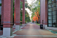 Walkway at Agricultural and Life Sciences building with fall color. Oregon State University.