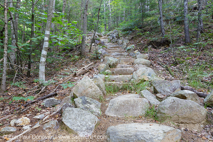 Presidential Range–Dry River Wilderness - Stone staircase along the Davis Path during the summer months in the White Mountains, New Hampshire.