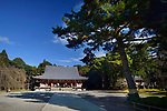 Old pine tree in front of Kondo hall of Shimo-Daigo part of Daigoji temple complex in Fushimi-ku, Kyoto, Japan 2017