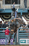 Sam Spreadborough competes in the saddle bronc event at the Reno Rodeo, in Reno, Nev. on Friday night, June 22, 2012..Photo by Cathleen Allison