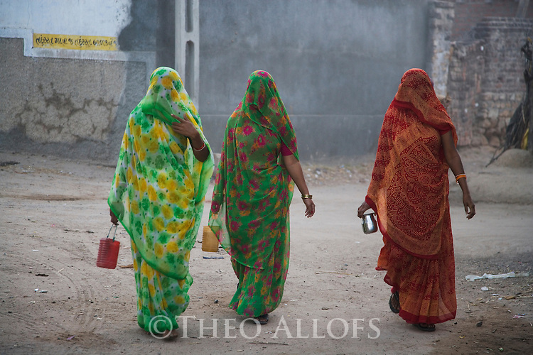 Gujarat women in traditional dresses walking in village; it is a custom to cover their faces with veils in front of strangers, Gujarat, India