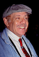 Jerry Stiller 1992 By Jonathan Green