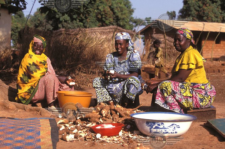© Giacomo Pirozzi / Panos Pictures..Northern CAMEROON..Women preparing cassava inside the village enclosure.