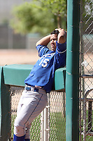 Cheslor Cuthbert #15 of the Kansas City Royals plays in an extended spring training game against the Chicago White Sox at the White Sox complex on April 16, 2011 in Glendale, Arizona. .Photo by:  Bill Mitchell/Four Seam Images.