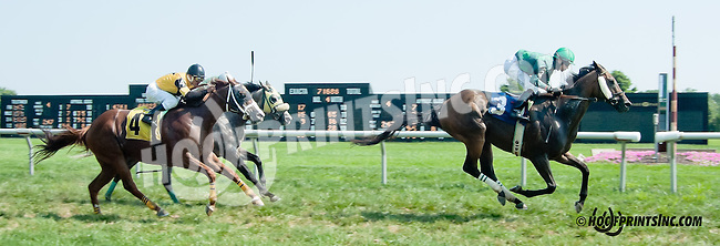 Fire Ruler winning at Delaware Park on 8/26/2013