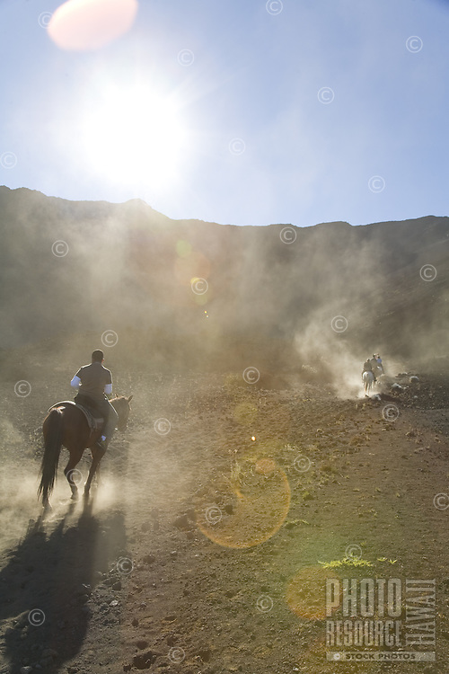 Tourists on a horseback riding tour, riding horses out of the Haleakala crater