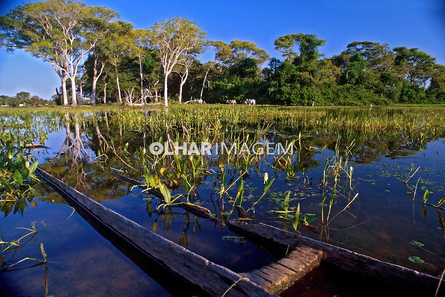 Lago no Pantanal. Mato Grosso. 2010. Foto Juca Martins