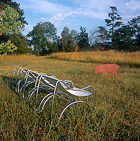Four metal chairs are set on the grass in a garden.