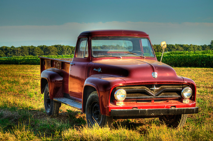 Many Vintage ford pick up All
