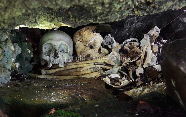 Bones of victims of human sacrifices, at a marae, a ceremonial and religious site, close to the archaeological site at Maeva, possibly the 3rd royal marae where human sacrifices took place, on Huahine-Nui on the island of Huahine, in the Leeward Islands, part of the Society Islands, in French Polynesia. The skulls found here have oval holes in them, and are approximately 300 years old. Maeva is thought to be an abandoned royal settlement, with many megalithic structures including marae, houses, agricultural structures, stone fish traps and fortification walls. Picture by Manuel Cohen