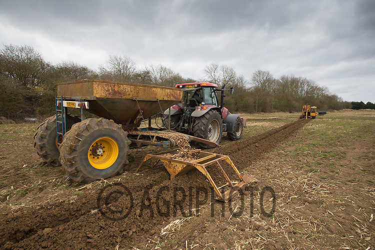A contractor laying drainage pipe.Picture Tim Scrivener 07850 303986.tim@agriphoto.com.?.covering agriculture in the UK?.