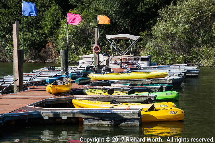 Waiting for skippers, bright yellow and green rental craft are moored at the Lake Chabot Marina.
