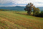 Cades Cove,  Great Smoky Mountains National Park, North Carolina, USA