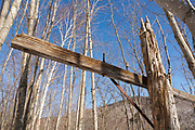 Crawford Notch State Park - Old telephone pole along the old Maine Central Railroad in the White Mountains, New Hampshire.