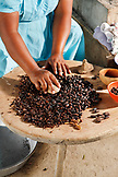 BELIZE, Punta Gorda, Village of San Pedro Colombia, grinding and removing the hard baked outer shell of the Cacao beans, making chocolate
