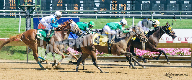 Scatajawea winning at Delaware Park on 7/18/15