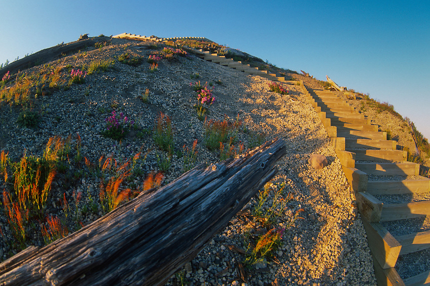 Sand Ladder at Windy Ridge (Fisheye), Mt. St. Helens National Volcanic Monument, Washington, US