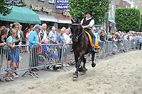 ALGEMEEN: JOURE: Park Heremastate/Midstraat, 27-07-2016, 62e Boerebrulloft, ©foto Martin de Jong