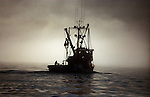 The Rogue makes her way into the fog off the coast of Kuiu Island as a deck hand secures the vesselÕs skiff.