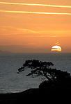 Morning Zen, Isle of Wight