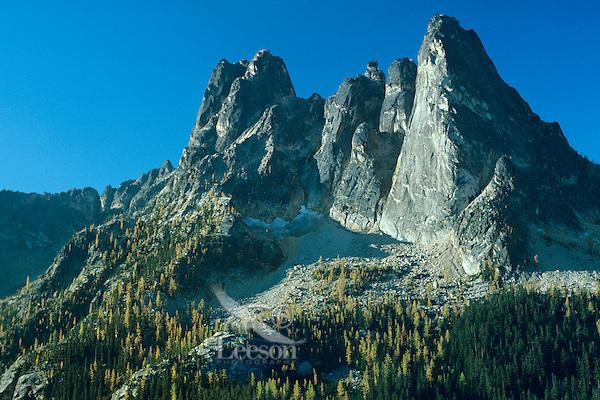 Liberty Bell Mountain near Washington Pass along North Cascades Highway (Highway 20), Washington.  Fall.  Larch trees are turning yellow.