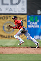 Batavia Muckdogs shortstop Christopher Torres (6) during a game against the Auburn Doubledays on June 17, 2018 at Falcon Park in Auburn, New York.  Auburn defeated Batavia 10-6.  (Mike Janes/Four Seam Images)