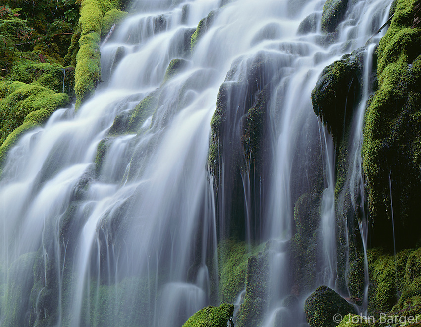 ORCAC_033 - USA, Oregon, Willamette National Forest, Three Sisters Wilderness, Upper Proxy Falls and lush green moss.