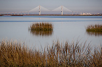 The Sidney Lanier Bridge as views from Jekyll Island Georgia. The Sidney Lanier Bridge is a cable-stayed bridge that spans the Brunswick River in Brunswick, Georgia, carrying four lanes of U.S. Route 17.  It is currently the longest-spanning bridge in Georgia and is 480 feet tall. It is also the seventy-sixth largest cable-stayed bridge in the world. It was named for poet Sidney Lanier.