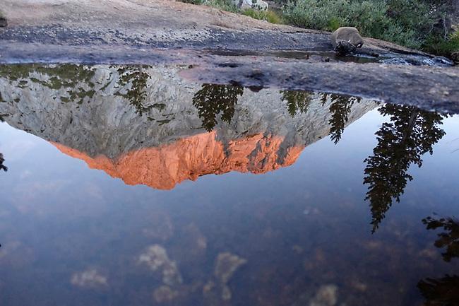 Fletcher Peak reflected in lake. Peak is 10,319ft