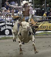 29 Aug 2004: PRCA Rodeo Bull Rider Beau Hill ranked 19th in the world riding the bull Night Vision during the PRCA 2004 Extreme Bulls competition in Bremerton, WA.