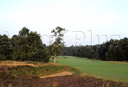 View of the fairway on the 13th hole at the Woodhill Spa Golf Club, Lincolnshire, England. Photo: Brian Morgan/actionplus.. .course courses general view views scene scenery spectacular clubs landscape venue English thirteenth 197