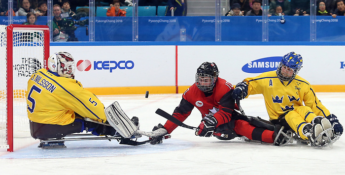 Pyeongchang, Korea, 10/3/2018-Ben Delaney of Canada plays Sweden in hockey during the 2018 Paralympic Games in PyeongChang. Photo Scott Grant/Canadian Paralympic Committee.