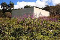 Brumadinho_MG, Brasil...Museu de Arte Contemporanea de Inhotim (CACI) em Brumadinho,. Na foto, vista externa da galeria de Adriana Varejao...The Inhotim Contemporary Art Museum (CACI). In this photo, the Gallery Adriana Varejao...Foto: BRUNO MAGALHAES / NITRO.