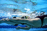 Warmups during the New Zealand Open Swimming Championships, Owen G Glenn National Aquatic Centre, Auckland, New Zealand. Friday 1 April 2016 Photo: Simon Watts / www.bwmedia.co.nz