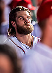 6 October 2017: Washington Nationals outfielder Bryce Harper looks out from the dugout during the first game of the NLDS against the Chicago Cubs at Nationals Park in Washington, DC. The Cubs shut out the Nationals 3-0 to take a 1-0 lead in their best of five Postseason series. Mandatory Credit: Ed Wolfstein Photo *** RAW (NEF) Image File Available ***