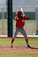 Juan Silva - Cincinnati Reds 2009 Instructional League. .Photo by:  Bill Mitchell/Four Seam Images..