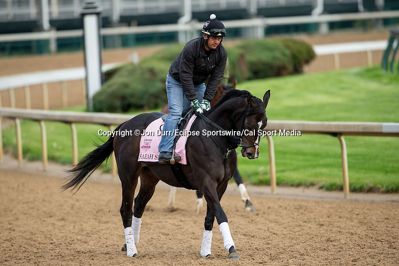 APRIL 26, 2015: Sarah Sis, trained by Joe Ragsdale exercises in preparation for  the 141st Kentucky Oaks at Churchill Downs in Louisville, KY. Jon Durr/ESW/Cal Sport Media