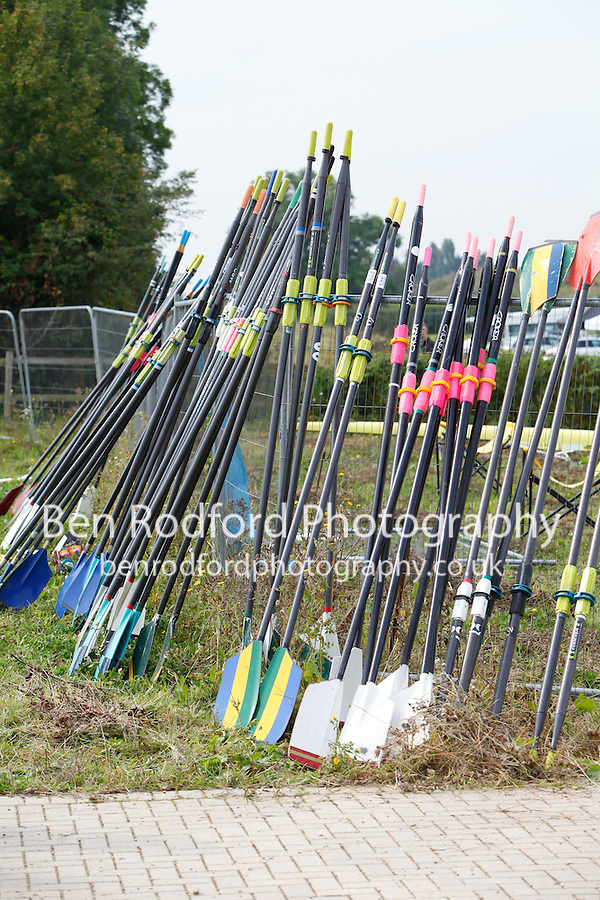 Saturday - Gloucester Regatta 2016<br /> <br /> To purchase this photo, or to see pricing information for Prints and Downloads, click the blue 'Add to Cart' button at the top-right of the page.