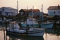 """Europe/France/Poitou-Charente/17/Charente-Maritime/Marennes: Port ostréicole """"La Cayenne"""""""